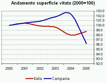 campania2.jpg
