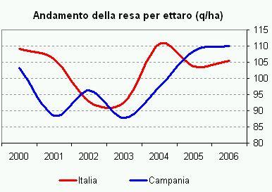 campania3.jpg