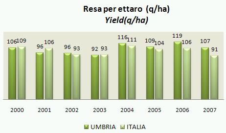 umbria07-4.jpg