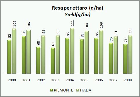 piemonte-2008-4.jpg