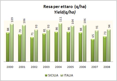 sicilia-2008-4.jpg