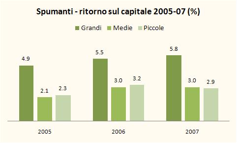 INDICI BILANCIO SPUMANTI 2007 5
